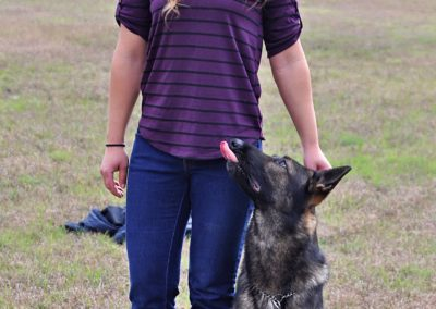 Dog Trainer in Spring Hill (14)