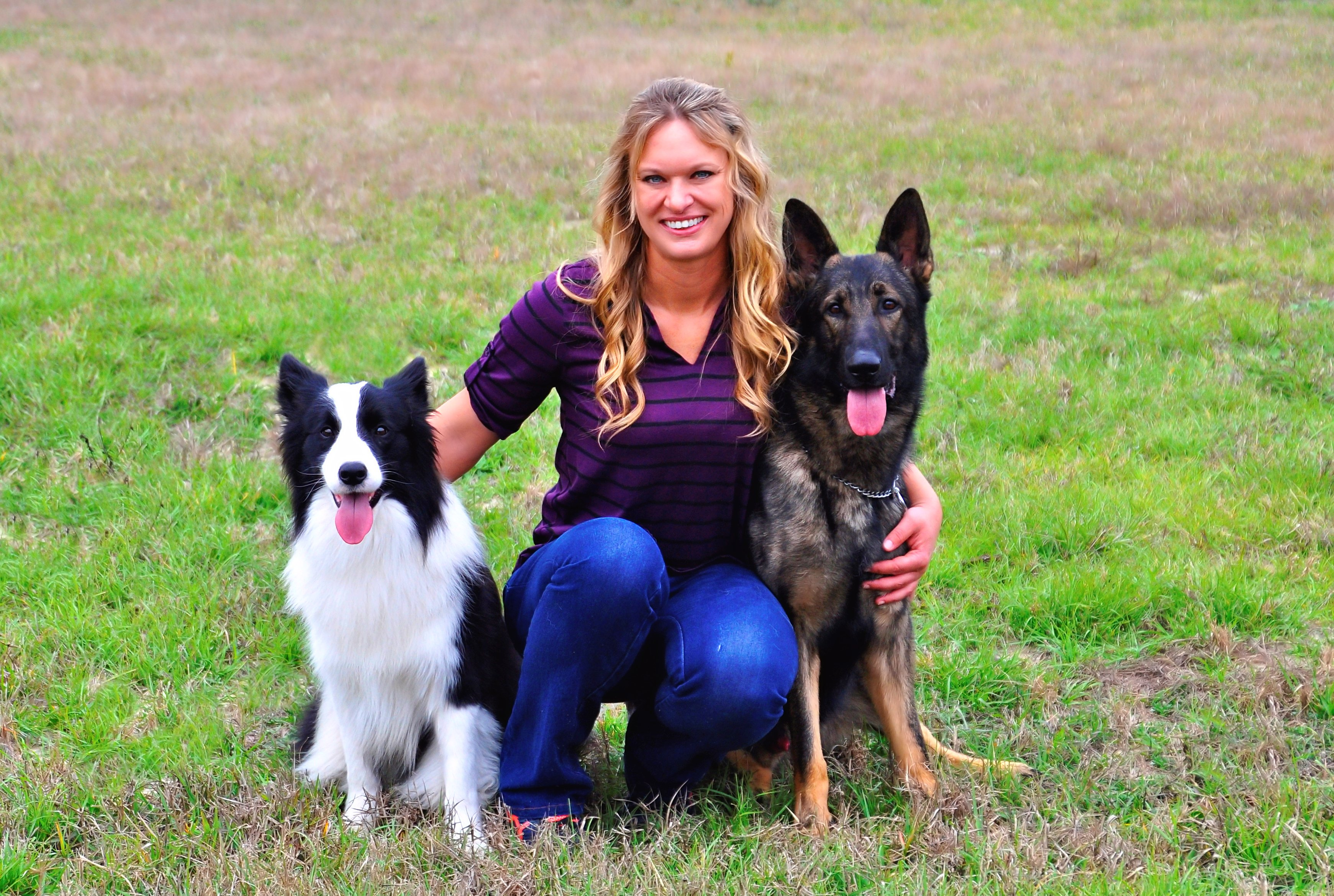 About dog boarding dog training and dog grooming stephanie and her dogs have achieved numerous titles and national rankings in obedience earning numerous high in trial awards stephanie prides herself on solutioingenieria Gallery